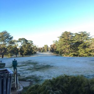 Frosty frosty morning