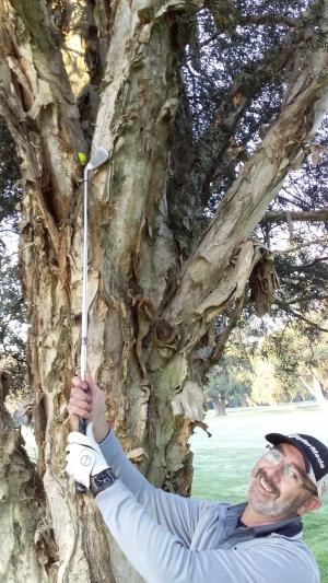 Ken up a tree